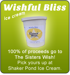 Wishful Bliss Ice Cream Available At Shaker Pond Ice Cream